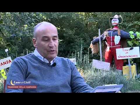 Lunario di Andrea Malossini. 13.10.2012. San Luca.