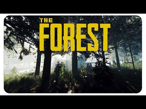 Erwacht im dunklen Wald #01 The Forest [deutsch] - Let's Play Together