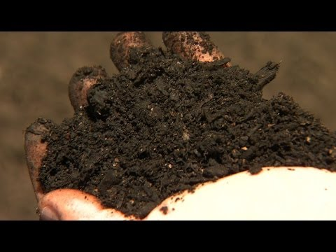 Soil Science: Down and Gritty in the Dirt | North Carolina Science Now | UNC-TV