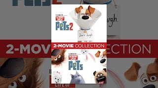 The Secret Life of Pets 2-Movie Collection Thumb