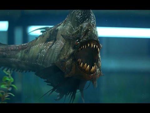 Top 5 Most Poisonous and Venomous Fish that Actually Exist!!!