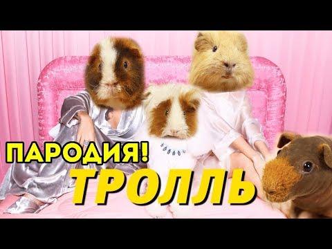Время и Стекло - Тролль / ПАРОДИЯ SvinkiShow