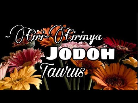 Ciri - Ciri Jodohmu Taurus 👫
