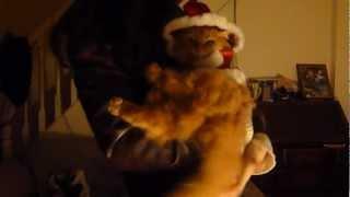 Santa Cat Thumbnail