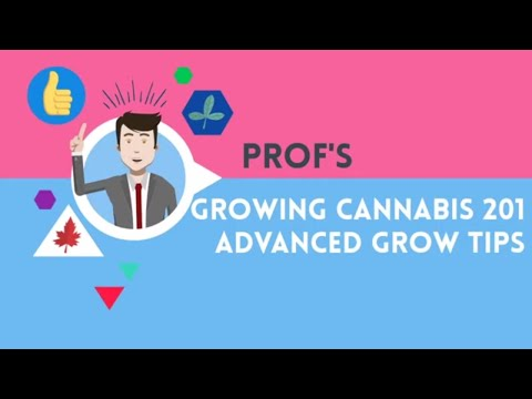 Growing Cannabis 201 - Advanced Grow Tips - Complete Course