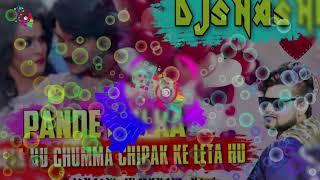 Pandey Ji Ka Beta Hoon Solid Dance Mix By Dj Shashi | Robert Brown DJS