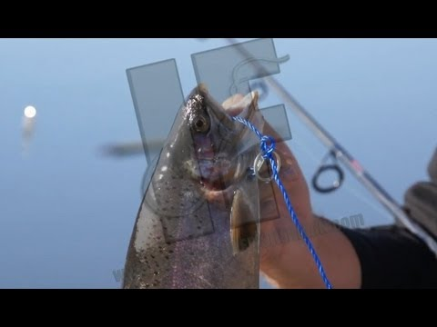 Basic Spinning Reel Maintenance from YouTube · Duration:  14 minutes 47 seconds