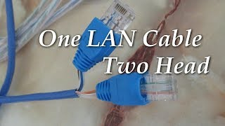How To Crimp Repair Lan Ethernet Cable (Cat5e) Split RJ45 Connector Share  to Two Laptop System - YouTube  YouTube