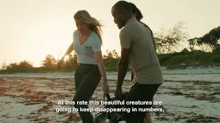 World Sea Turtle Day with Ellie Goulding thumbnail