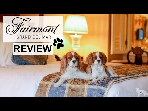 DOG FRIENDLY HOTEL REVIEW | Fairmont Grand Del Mar San Diego California | #1 LUXURY