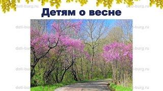 Весна - детская презентация