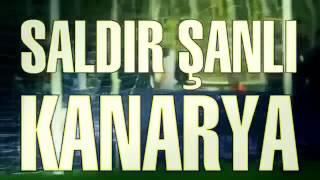 Fenerbahçe Marşı: SALDIR ŞANLI KANARYA (2013)