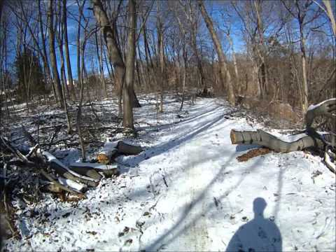 Wissahickon Valley Park Trail Run (Forbidden Drive Branch Trails)- Philadelphia, PA