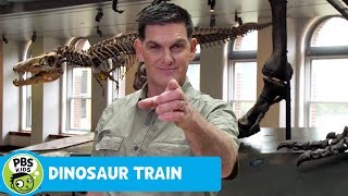 DINOSAUR TRAIN | Dinosaur Discoveries: Camptosaurus | PBS KIDS