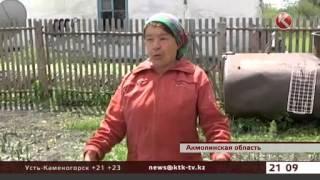 Град уничтожил огороды, живность и посевы пшеницы в Акмолинской области