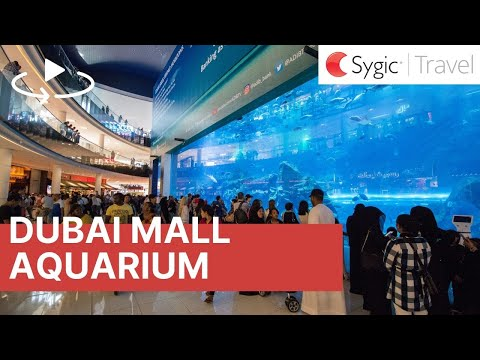 360 video: Dubai Mall - Aquarium, Dubai, United Arab Emirates