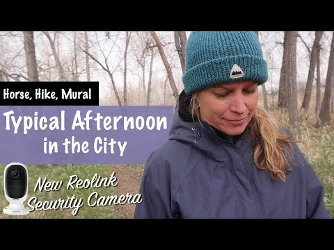 Typical Afternoon In The City.  Horse, Hike, Painting Mural, New ReoLink Camera Forest - S3 -Ep#32