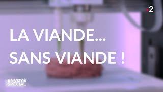 Envoyé spécial. La viande... sans viande - Jeudi 19 mars 2020 (France 2)
