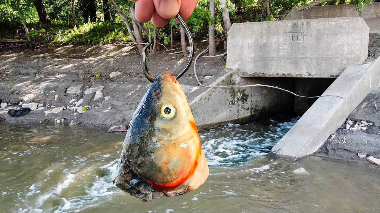 This HIDDEN Spillway was Hiding a Monster!!! (Biggest of the YEAR!)