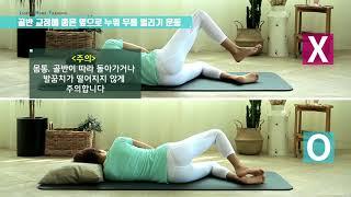 [자생홈트] 허리 건강에 좋은 스트레칭