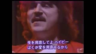 TOTO I'll supply the love live 1980