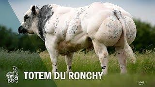 TOTEM DU RONCHY - Portes ouvertes BBG 2017
