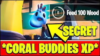 *NEW* CORAL BUDDIES LOCATION & HOW TO FEED 100 WOOD (Free XP SECRET Challenge - Fortnite Season 3)