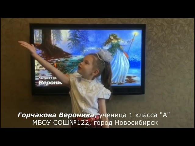 Изображение предпросмотра прочтения – ВероникаГорчакова читает произведение «Зима недаром злится» Ф.И.Тютчева