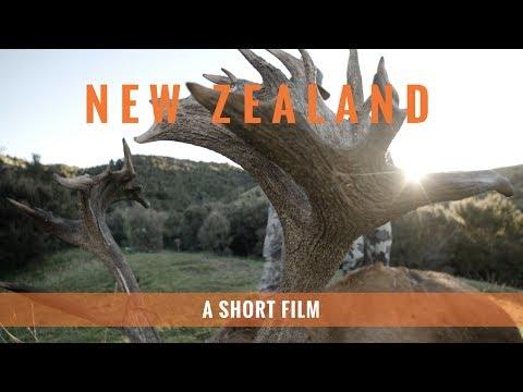 New Zealand - An International Adventure
