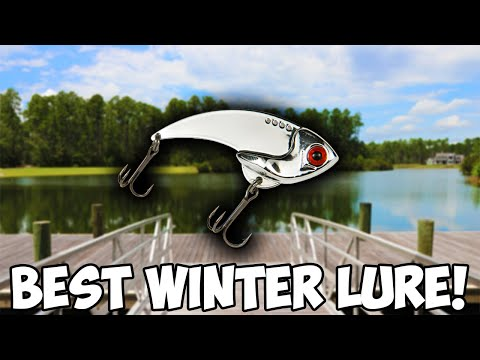 This TINY Lure Is A BIG Winter Bass MAGNET!!! | Winter Bass Fishing