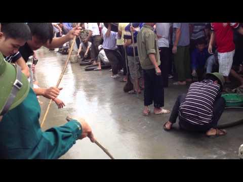 Pháo đất xã Mê Linh - Đông Hưng - Thái Bình 30/4/2014 - 03 (Video by Định)