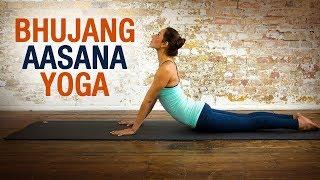 Bhujangaasana - Shelly Khera -Yog Shakti