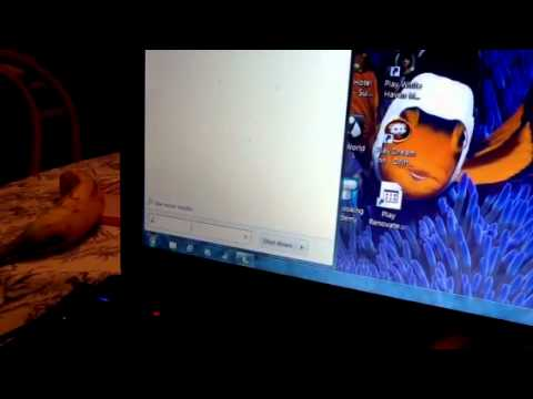 Acer aspire zs600 webcam not working