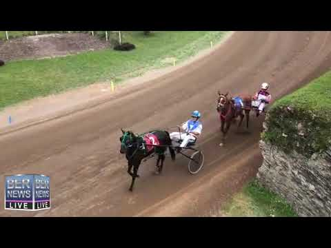 Bermuda Harness Pony Racing, December 26 2018