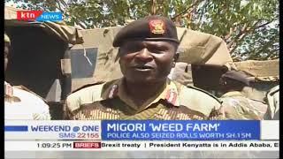War on narcortics: Migori \'weed farm\' with rolls worth 1.5 Million