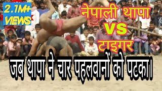 #kusti मैदान में मचा हड़कंप!जब नेपाली थापा ने पटका चार पहलवानों को
