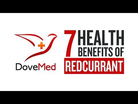 7 Health Benefits Of Redcurrant