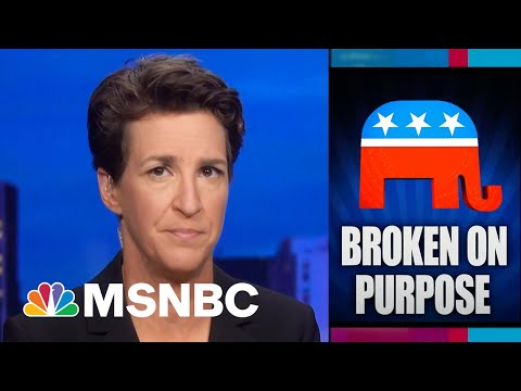 Watch Rachel Maddow Highlights: August 20th | MSNBC
