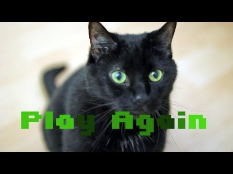 N2 the Talking Cat S3 Ep5 - Cat Video Game (Defender Cat)