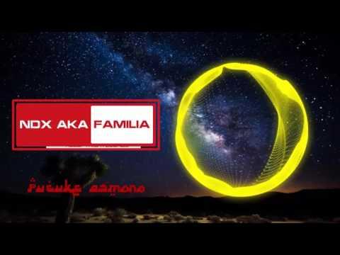 Ndx aka familia - Pucuke asmoro