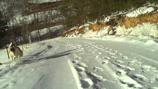 Sledding down mountain road #2