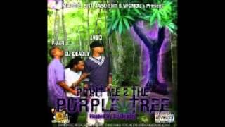 flyin high- P-Air and Jabo ENT.