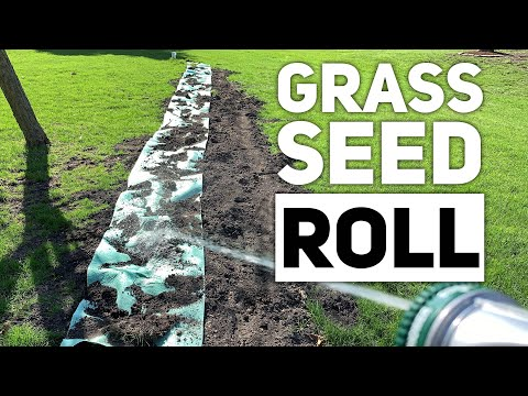 grotrax-grass-seed-mat-roll-for-lawn-bare-spots-review