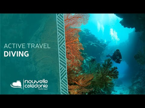 Dive in New Caledonia