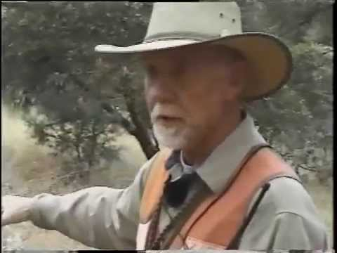 Bird Dogs Forever Mearns Quail Episode
