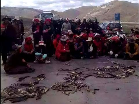 Minyak mining protest: There is no rule of law for the Communist Party