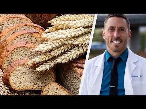 Paul Saladino MD On Why We Don't Need Fiber For A Healthy Microbiome