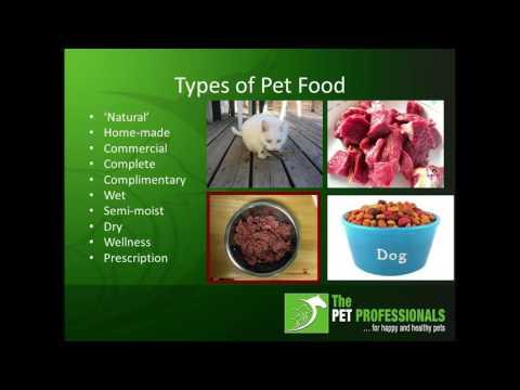 Understanding Canine Nutrition