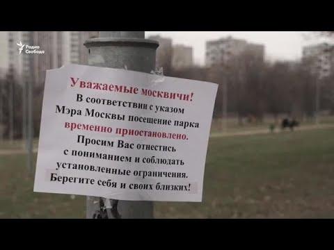 Москва за день