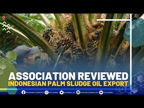 ASSOCIATION REVIEWED INDONESIAN PALM SLUDGE OIL EXPORT